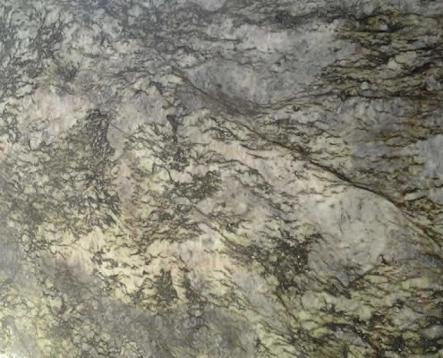 Blue Flower Granite Silver Travertine 2 at Barra & Trumbore