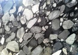 Black Marinace Granite Silver Travertine 2 at Barra & Trumbore